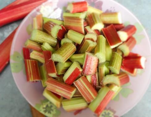 rhubarbe (2)