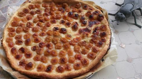 tarte fine aux mirabelles 1
