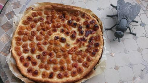 tarte fine aux mirabelles